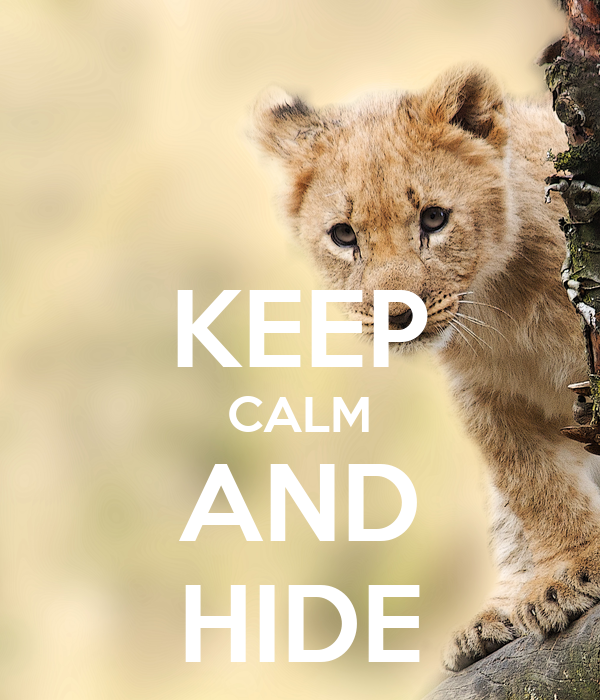 KEEP CALM AND HIDE