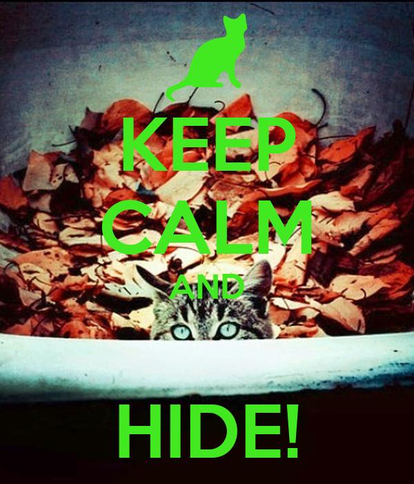 KEEP CALM AND  HIDE!