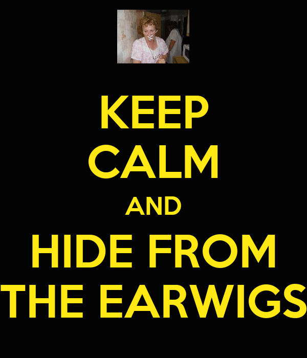 KEEP CALM AND HIDE FROM THE EARWIGS
