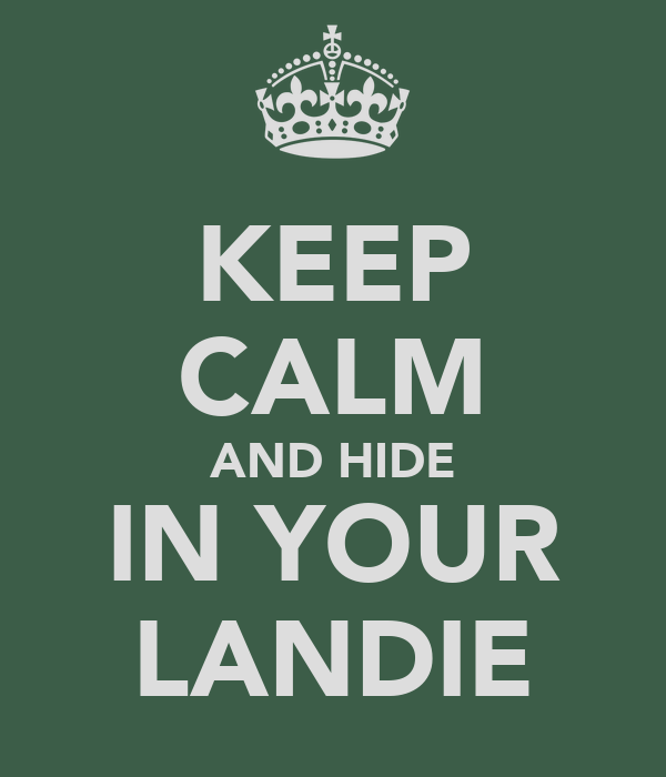 KEEP CALM AND HIDE IN YOUR LANDIE