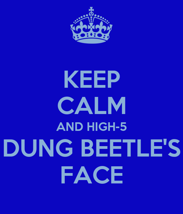 KEEP CALM AND HIGH-5 DUNG BEETLE'S FACE