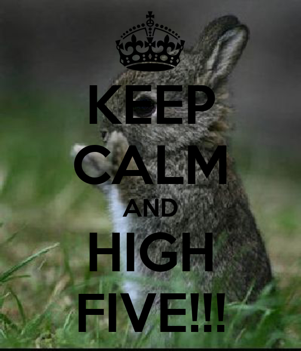 KEEP CALM AND HIGH FIVE!!!