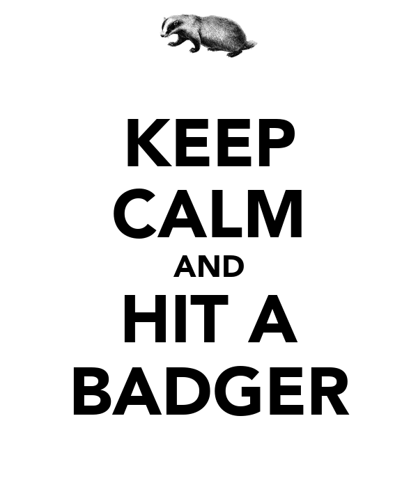 KEEP CALM AND HIT A BADGER
