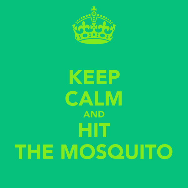 KEEP CALM AND HIT THE MOSQUITO