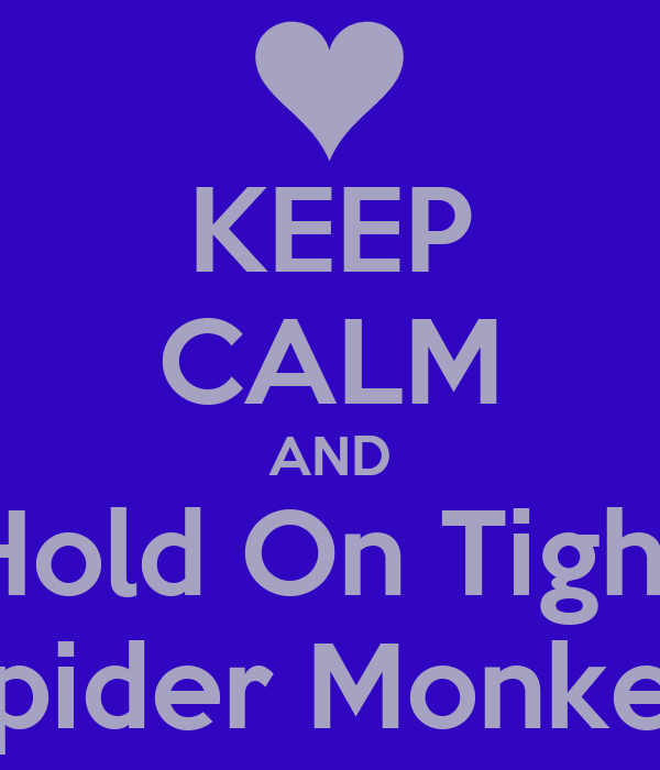 KEEP CALM AND Hold On Tight Spider Monkey
