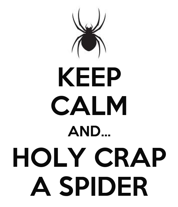 KEEP CALM AND... HOLY CRAP A SPIDER