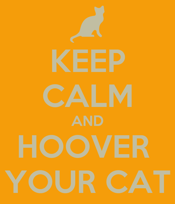 KEEP CALM AND HOOVER  YOUR CAT