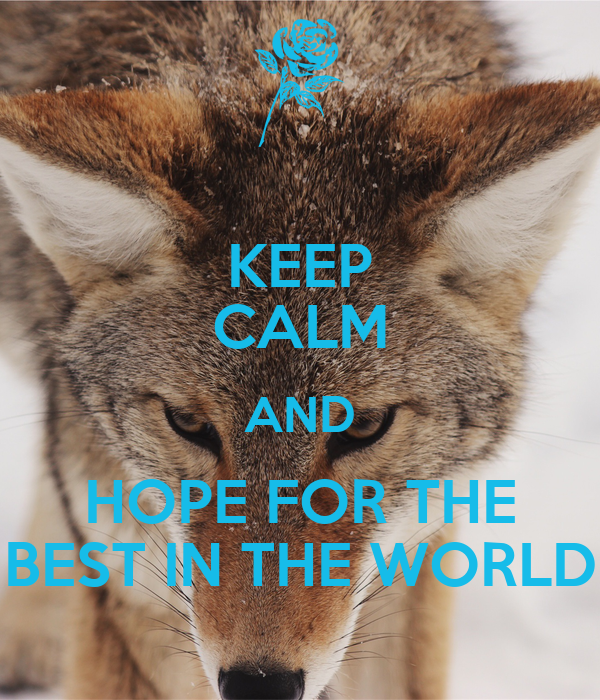 KEEP CALM AND HOPE FOR THE BEST IN THE WORLD