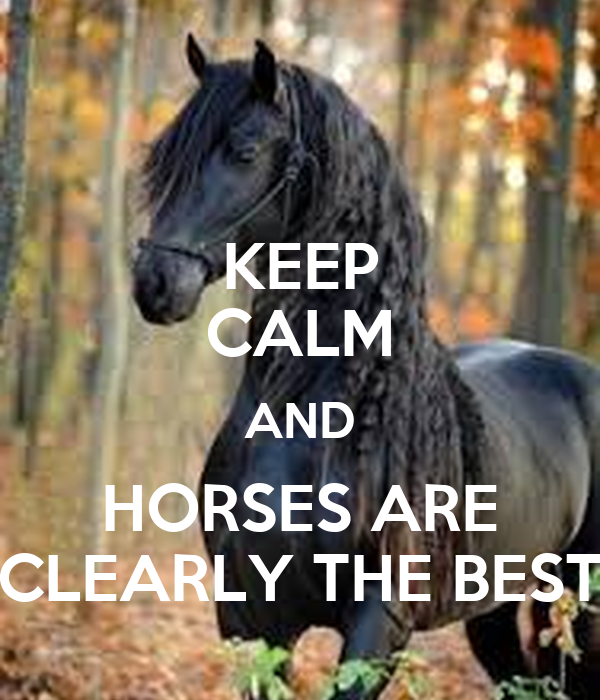 KEEP CALM AND HORSES ARE CLEARLY THE BEST