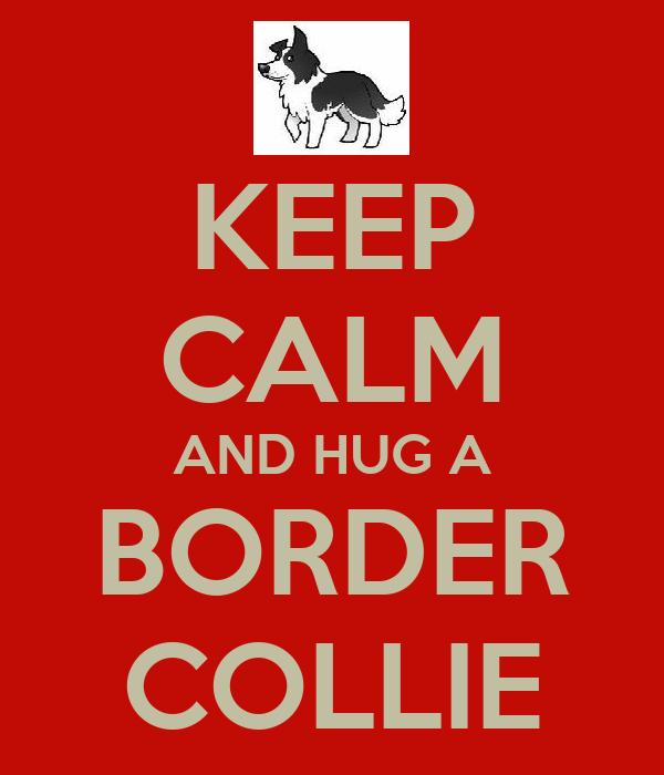 KEEP CALM AND HUG A BORDER COLLIE