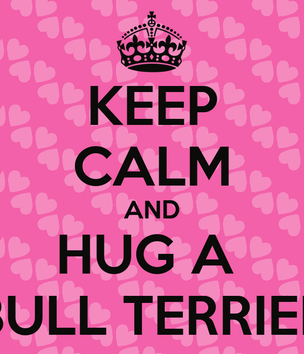 KEEP CALM AND HUG A  BULL TERRIER