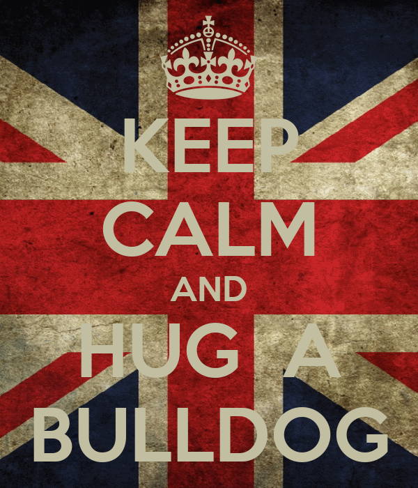 KEEP CALM AND HUG  A BULLDOG