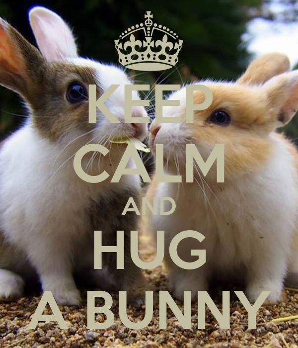 KEEP CALM AND HUG A BUNNY