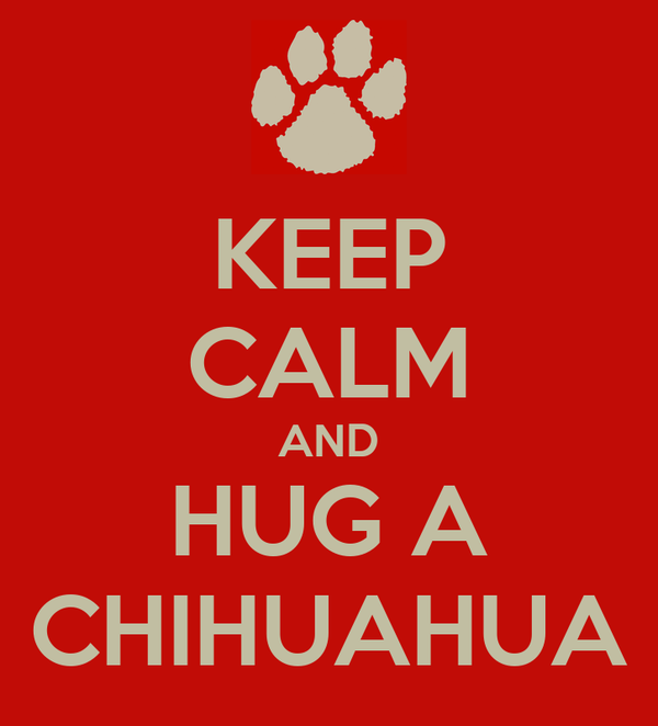 KEEP CALM AND HUG A CHIHUAHUA