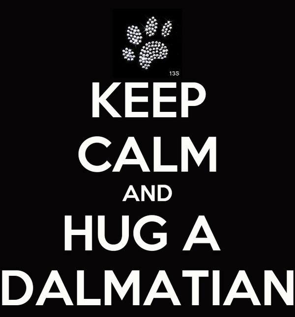 KEEP CALM AND HUG A  DALMATIAN