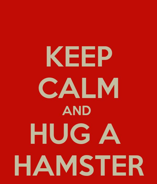 KEEP CALM AND  HUG A  HAMSTER