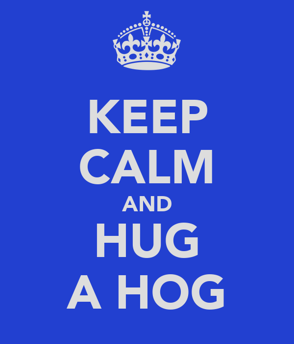 KEEP CALM AND HUG A HOG