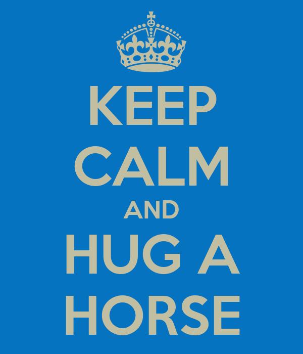 KEEP CALM AND HUG A HORSE