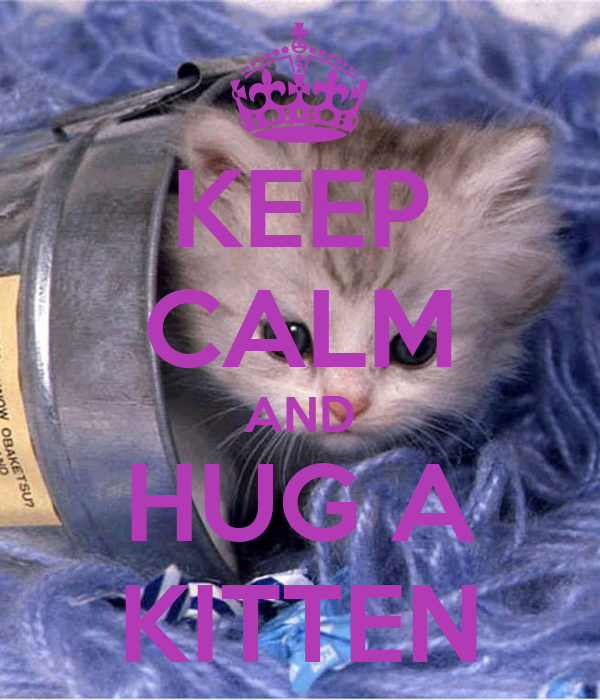 KEEP CALM AND HUG A KITTEN