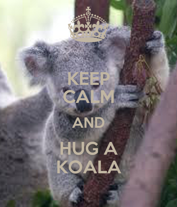 KEEP CALM AND HUG A KOALA