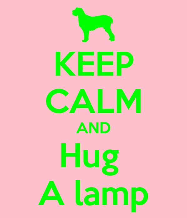 KEEP CALM AND Hug  A lamp