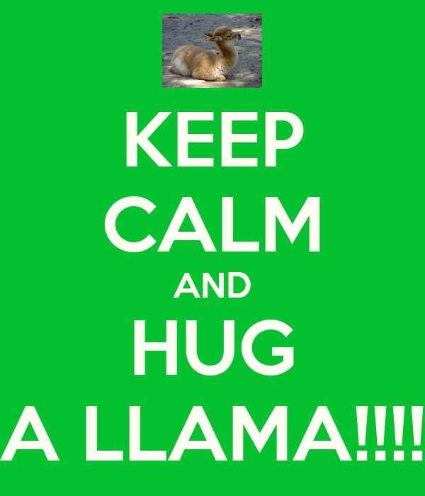 KEEP CALM AND HUG A LLAMA!!!!