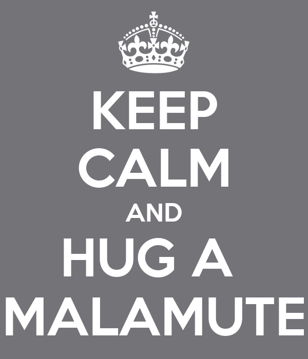 KEEP CALM AND HUG A  MALAMUTE