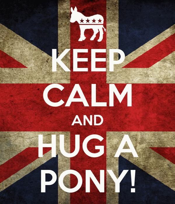 KEEP CALM AND HUG A PONY!