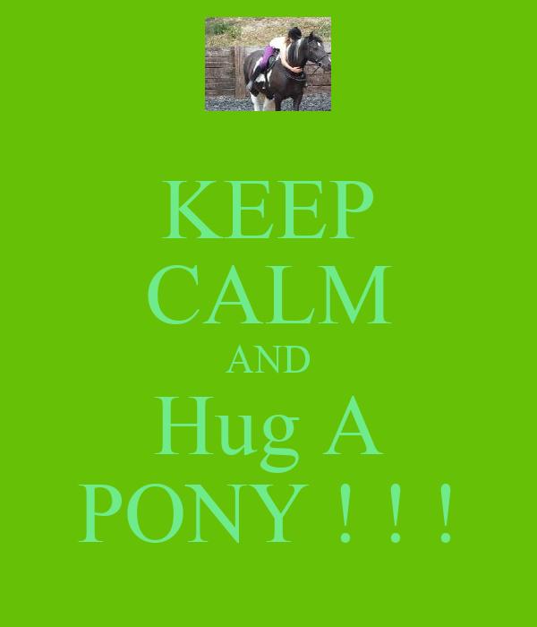 KEEP CALM AND Hug A PONY ! ! !
