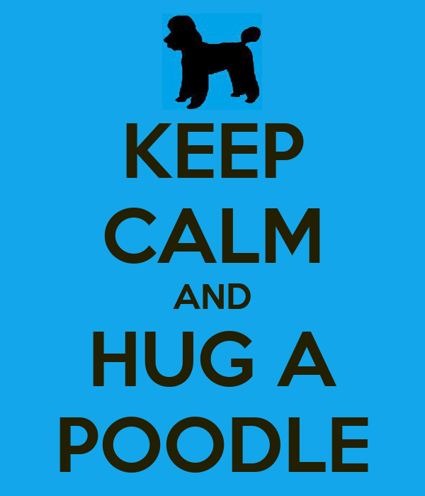 KEEP CALM AND HUG A POODLE