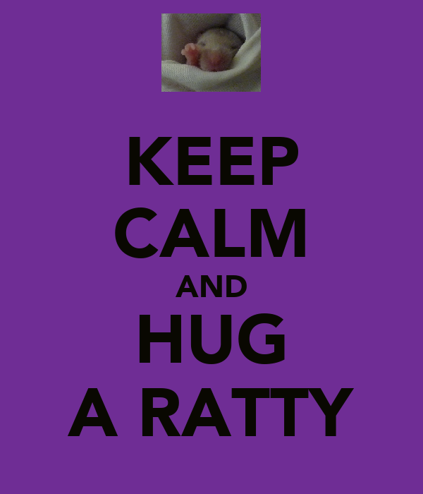 KEEP CALM AND HUG A RATTY