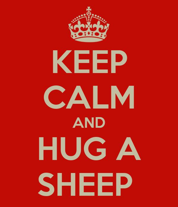 KEEP CALM AND HUG A SHEEP