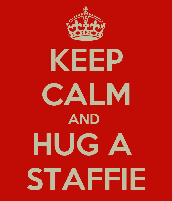 KEEP CALM AND  HUG A  STAFFIE