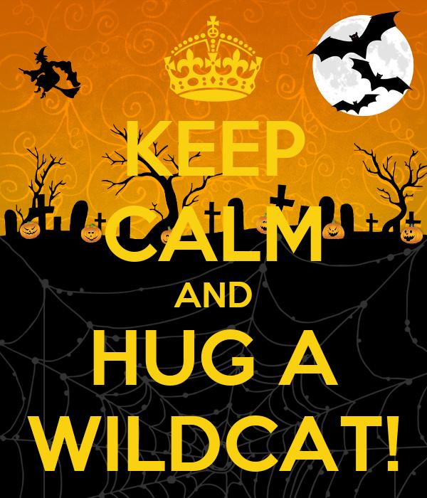 KEEP CALM AND HUG A WILDCAT!