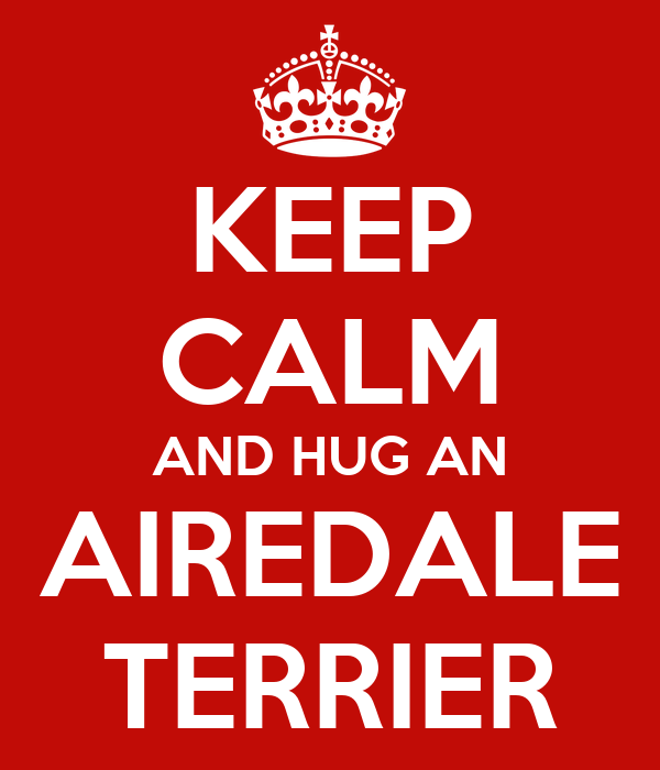 KEEP CALM AND HUG AN AIREDALE TERRIER