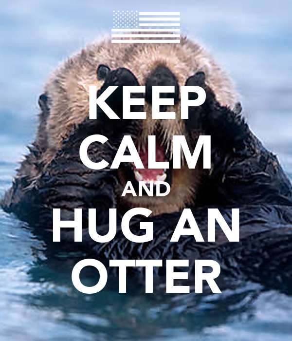 KEEP CALM AND HUG AN OTTER