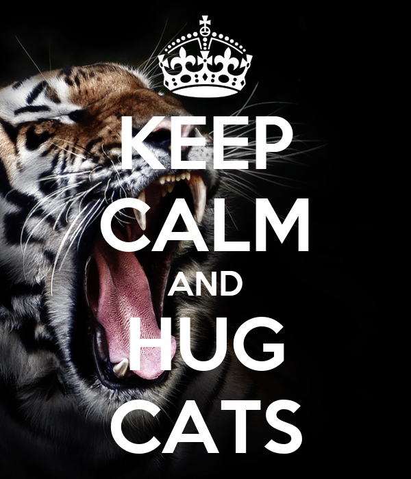 KEEP CALM AND HUG CATS