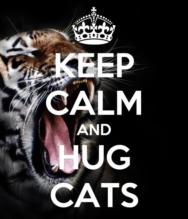 KEEP CALM AND HUG CATS