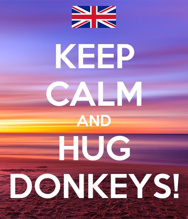 KEEP CALM AND HUG DONKEYS!