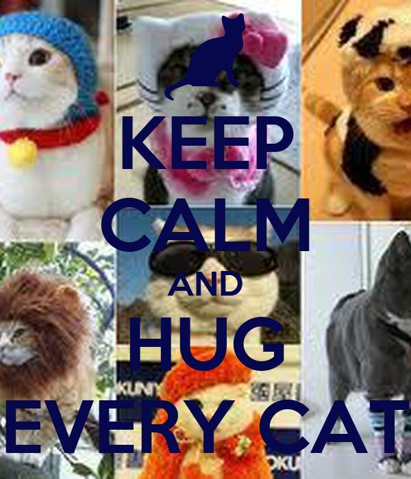 KEEP CALM AND HUG EVERY CAT