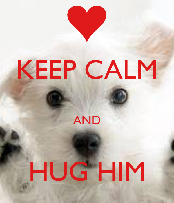 KEEP CALM  AND  HUG HIM