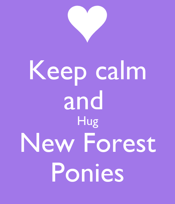 Keep calm and  Hug New Forest Ponies