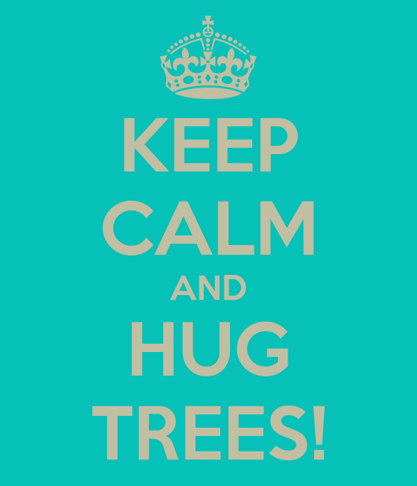 KEEP CALM AND HUG TREES!