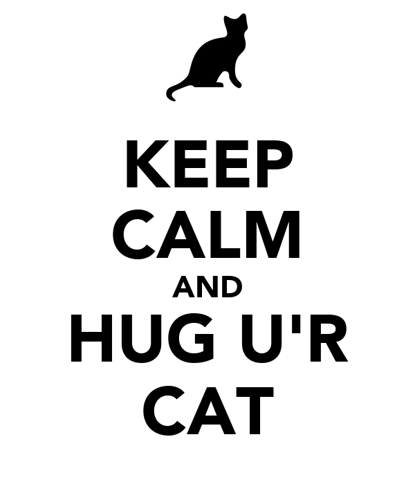 KEEP CALM AND HUG U'R CAT