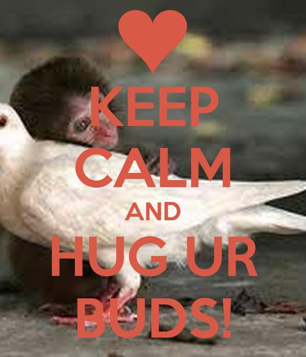 KEEP CALM AND HUG UR BUDS!