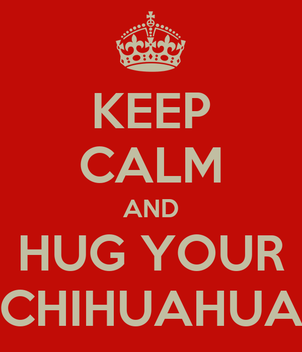 KEEP CALM AND HUG YOUR CHIHUAHUA