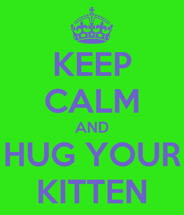 KEEP CALM AND HUG YOUR KITTEN