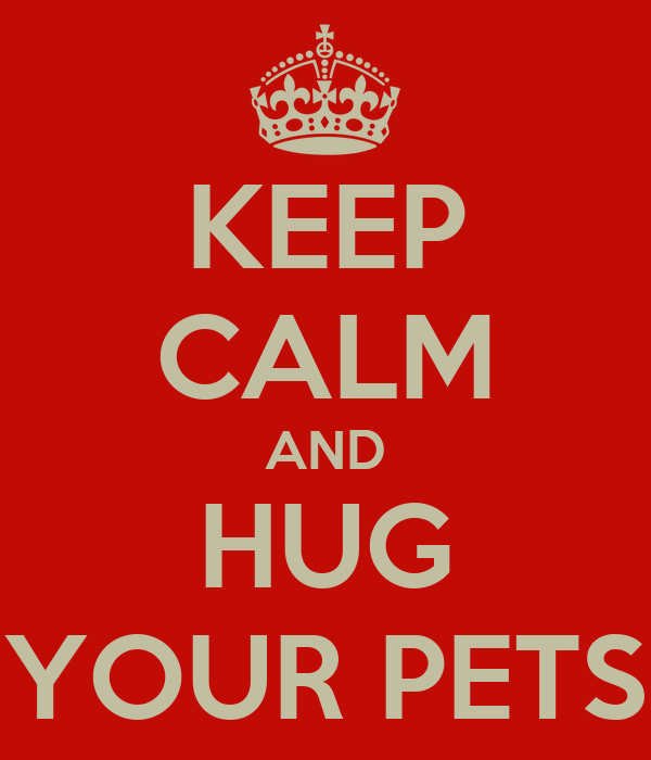 KEEP CALM AND HUG YOUR PETS