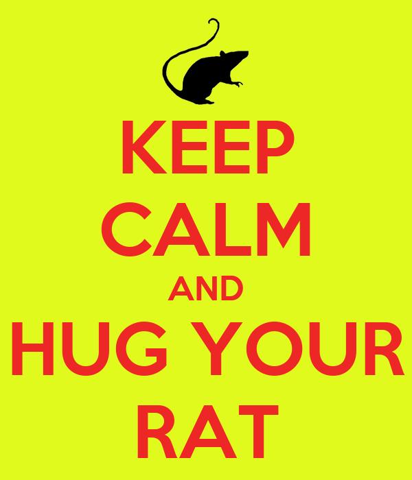 KEEP CALM AND HUG YOUR RAT