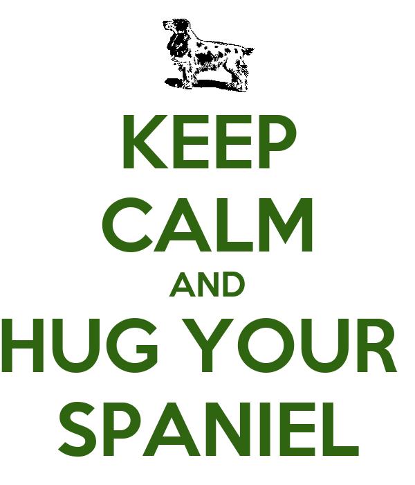 KEEP CALM AND HUG YOUR  SPANIEL